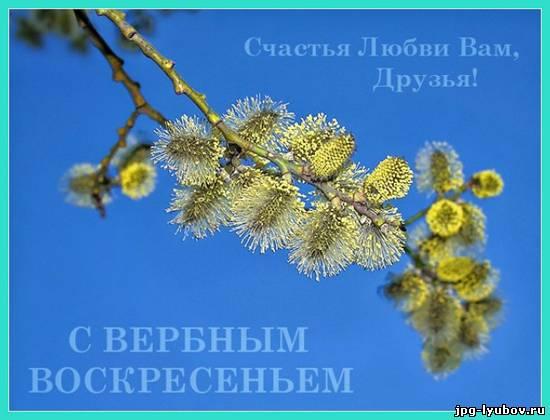 http://www.jpg-lyubov.ru/_ph/325/2/518836499.jpg
